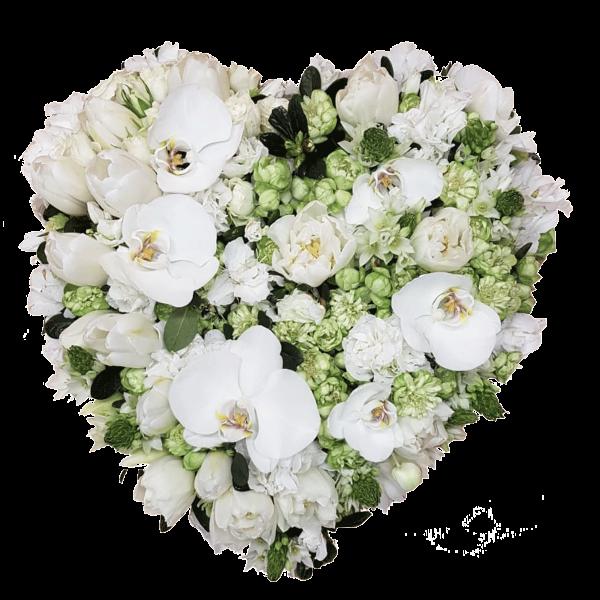 Cuore fiori bianchi