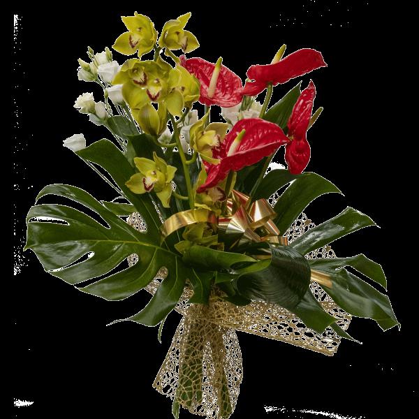 Mazzo Anthurium orchidee